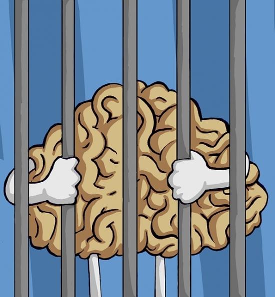 Distorted Brains Artwork
